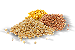 Nahrungs- und Futtermittelindustrie